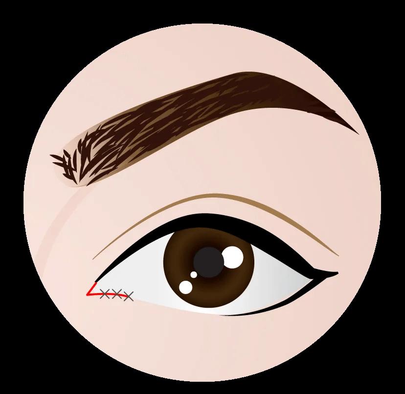 openeye-model